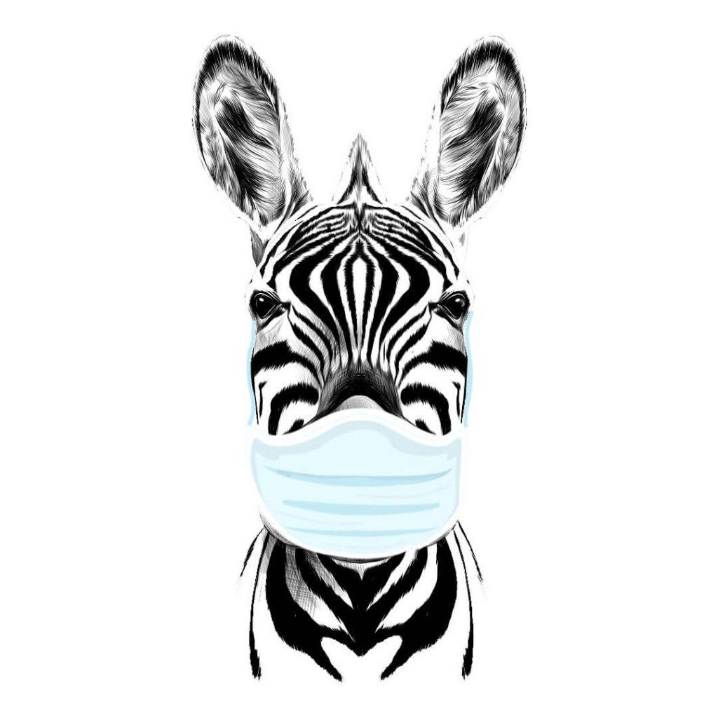 zebra e Coronavirus – Dr. Javier Carbajal